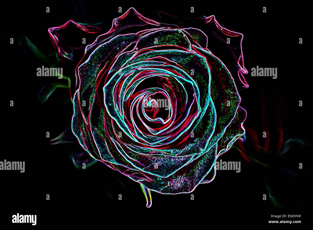 Sfondo astratto fatto di fiori di rose, incandescente neon stile. Immagini Stock