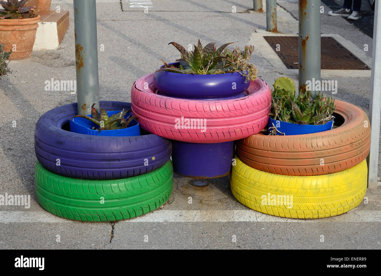 Dipinto di pneumatici o pneumatico piantatrici o gomma colorata vasi per piante Immagini Stock