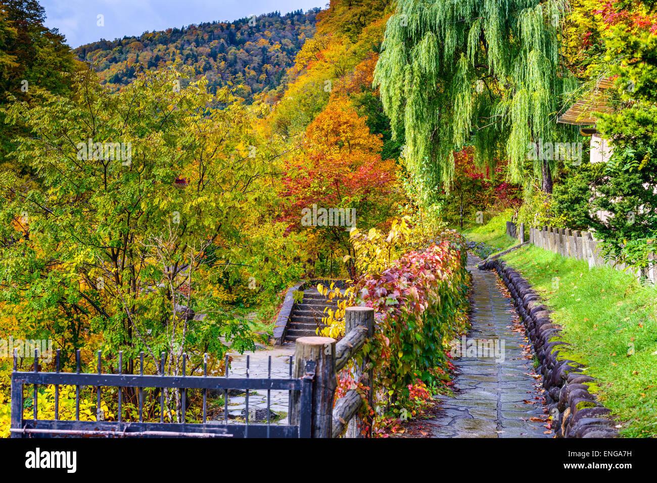 Jozankei, Giappone caduta delle foglie. Immagini Stock