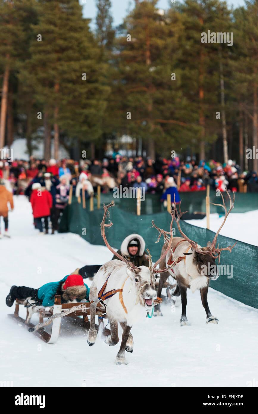 Popolazione Sami al festival invernale, gara di renne, Jokkmokk, Lapponia, a nord del circolo polare artico, Svezia, Immagini Stock