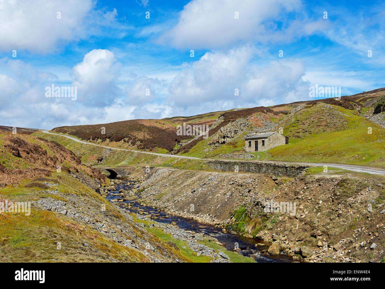 La vecchia pista lead mining campo, Swaledale, Yorkshire Dales National Park, North Yorkshire, Inghilterra, Regno Immagini Stock