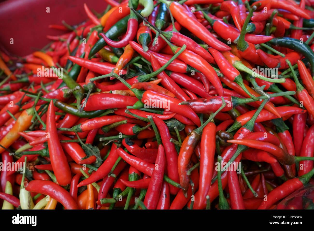Grandi peperoncino rosso su una fase di stallo in una Bangkok mercato alimentare, Thailandia Immagini Stock