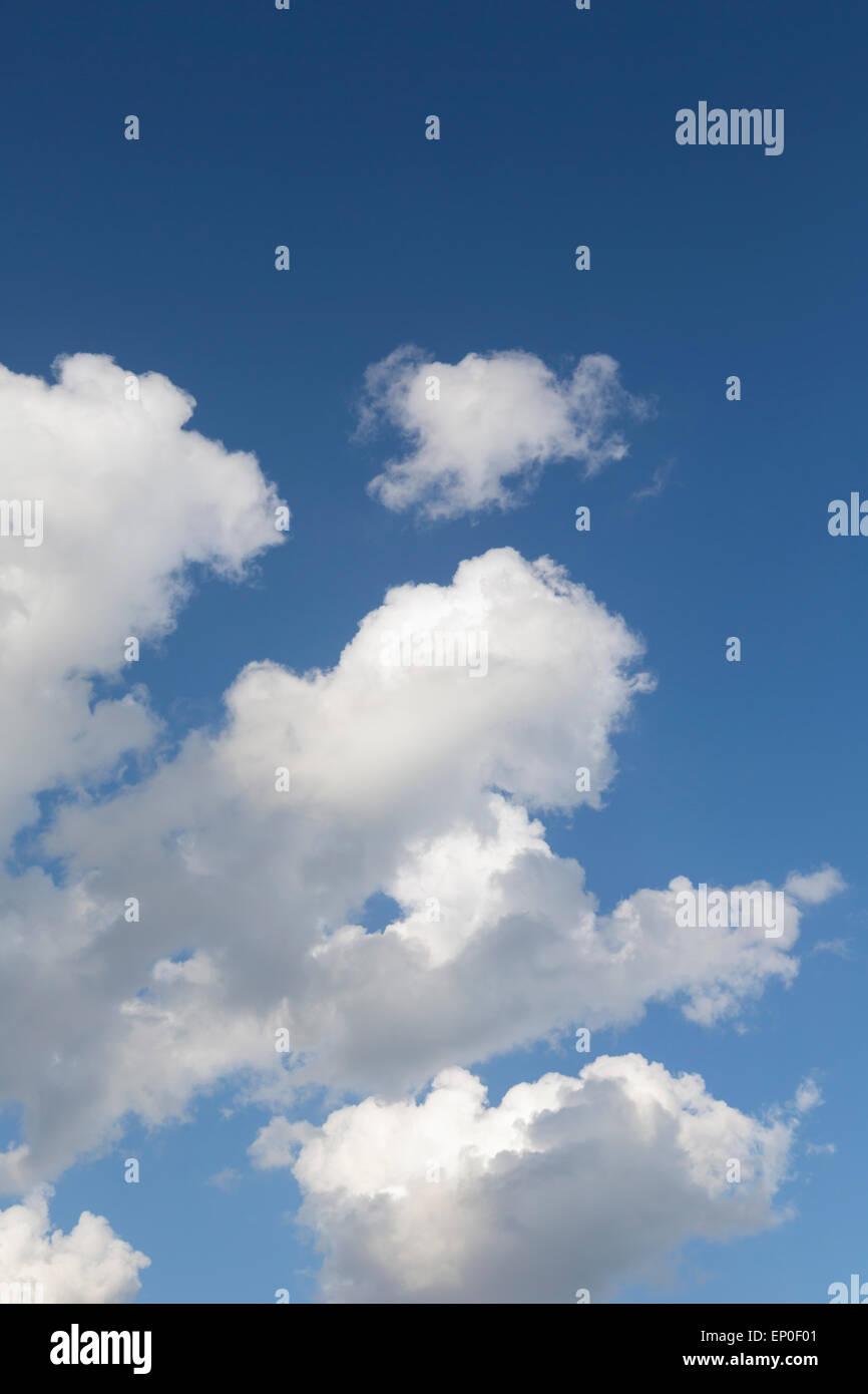 Cumulus nubi nel cielo blu. Immagini Stock