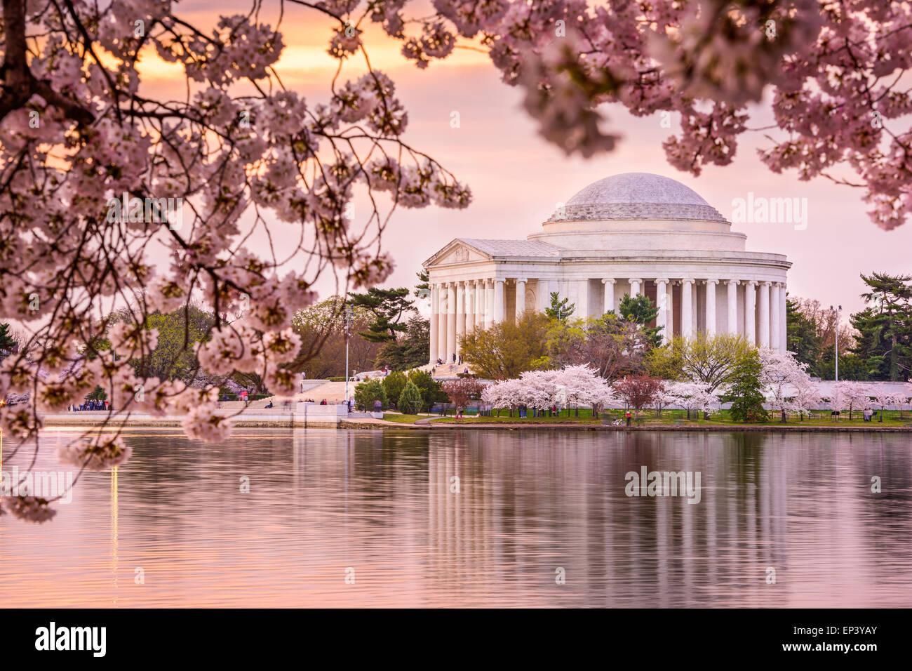 Washington, DC con il bacino di marea e Jefferson Memorial durante la primavera. Immagini Stock