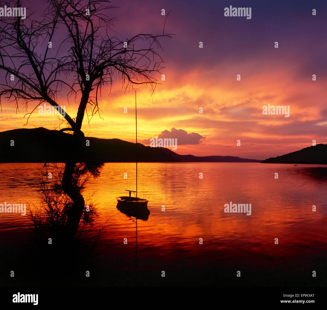 Paesaggio al tramonto. Tre e barca a vela nel tramonto al mare. Immagini Stock