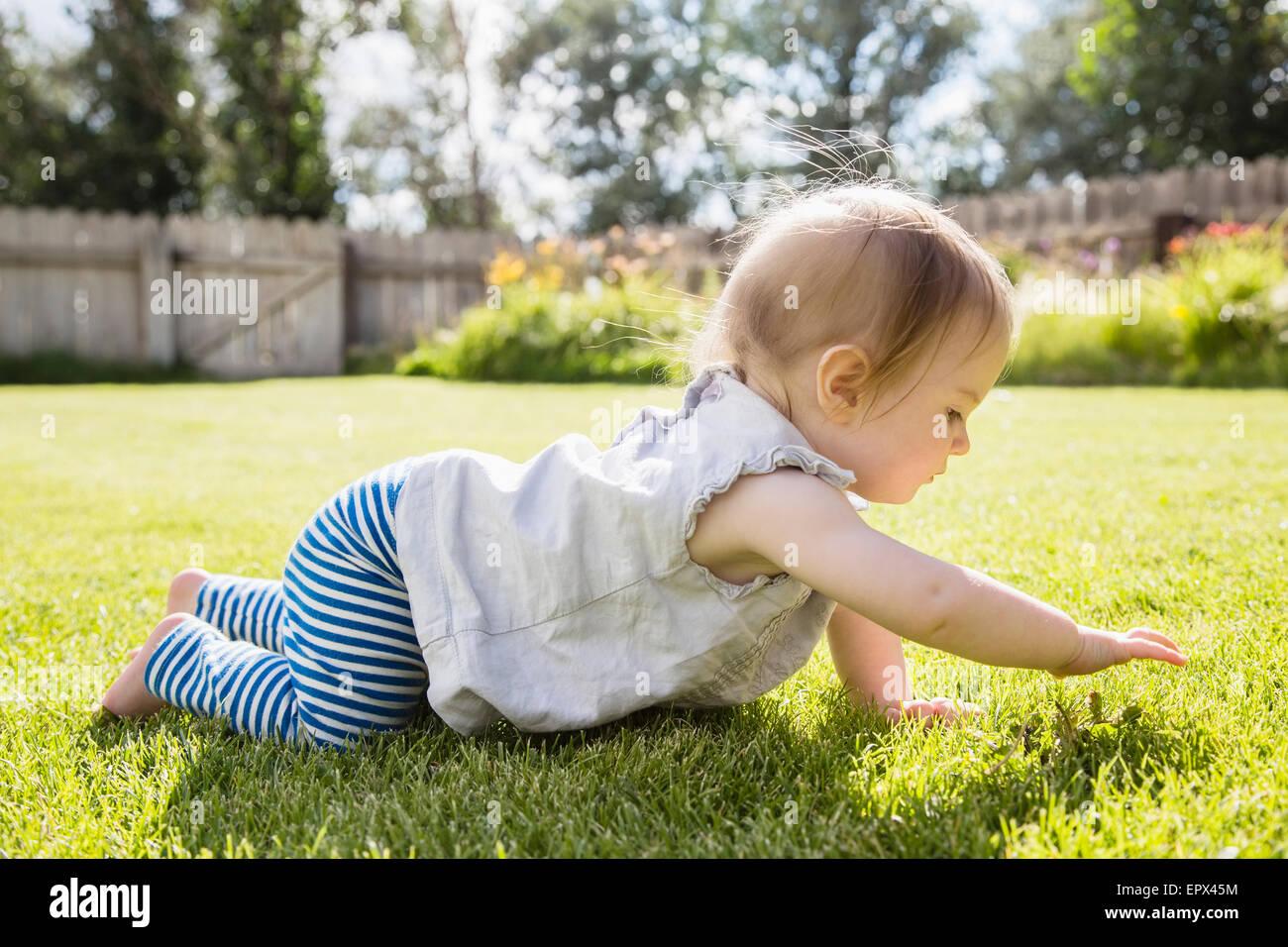 Baby girl (6-11 mesi) gattona Immagini Stock