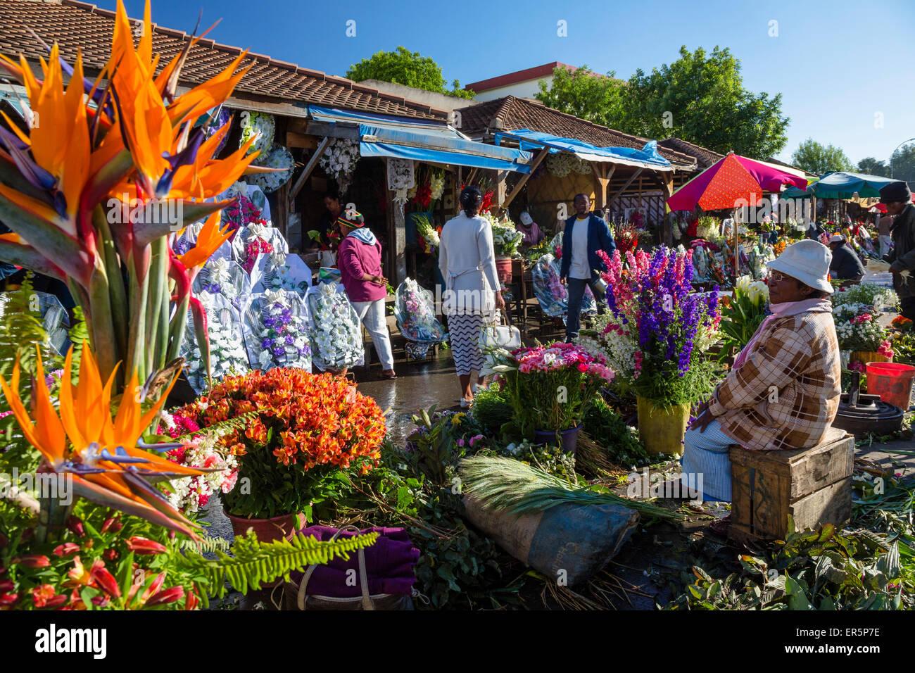 Il mercato dei fiori di Antananarivo, capitale del Madagascar, Africa Foto Stock