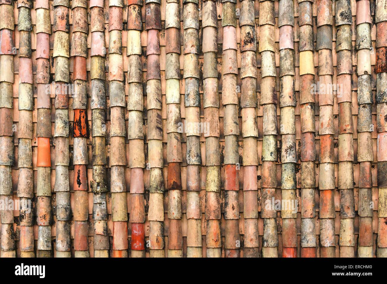 Traditionals antiche piastrelle coperte da fungo e modello in