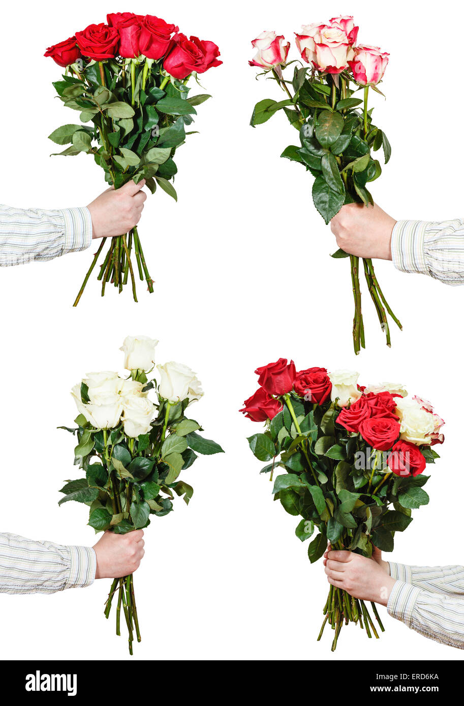 Set Di Grandi Mazzi Di Vari Rose Fiori Nelle Mani Maschio Isolato Su Sfondo  Bianco