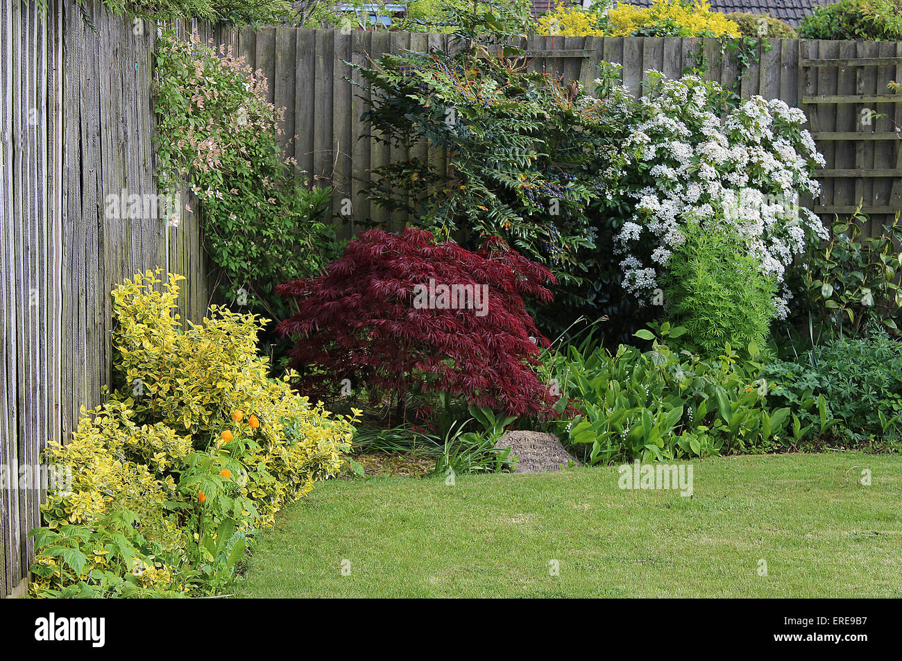 Inghilterra dorset fiori da giardino attraente angolo di un