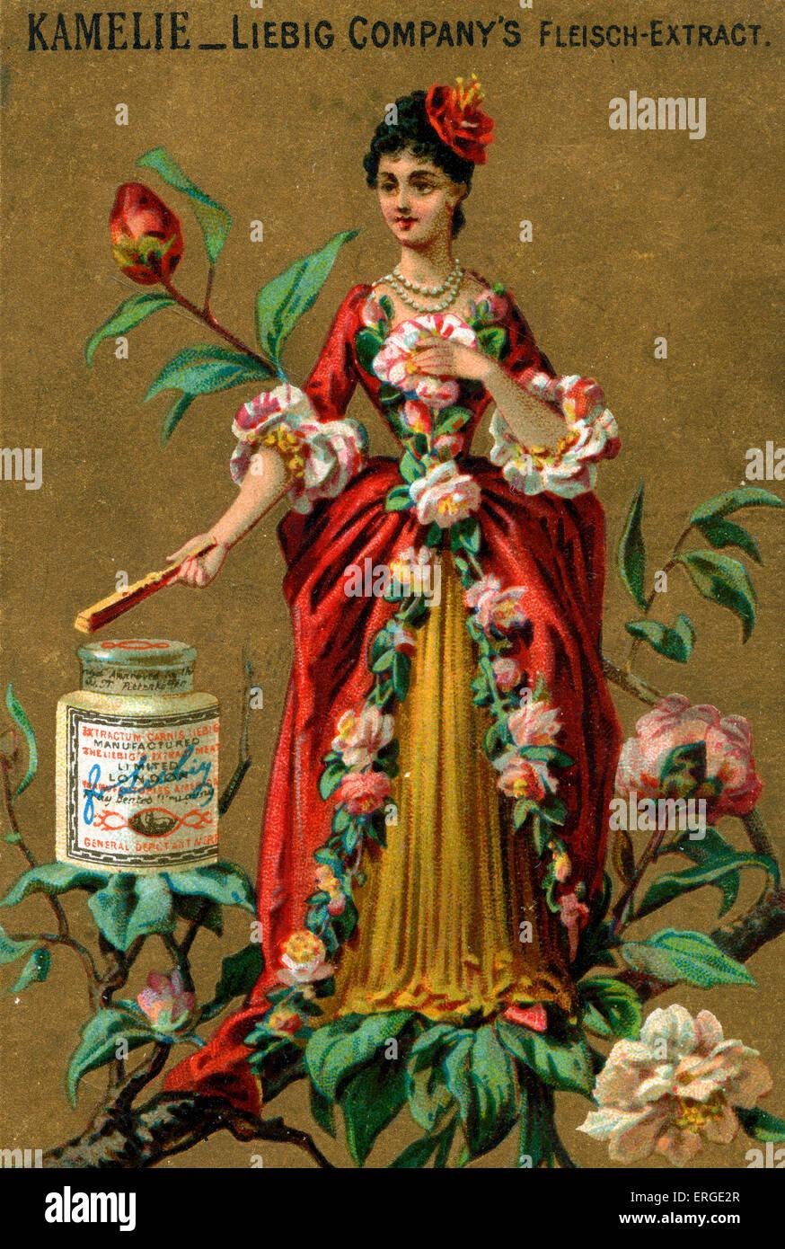 Camellia personificata.giovane lady adornata con camelie. Essa si erge su di un ramo. Scheda di Liebig serie (1888). Immagini Stock