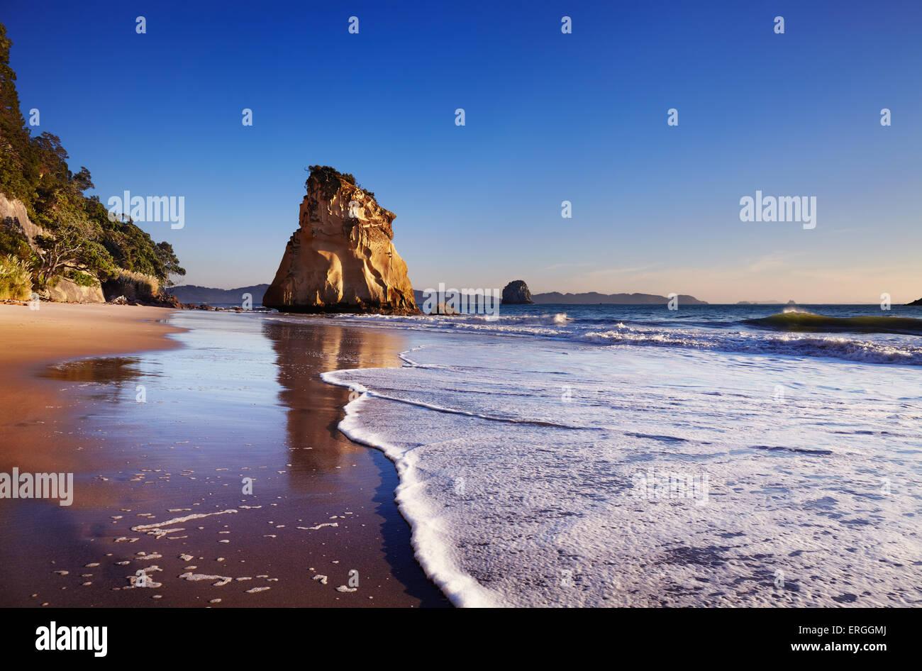 Hoho Rock, Cove della cattedrale, Penisola di Coromandel, Nuova Zelanda Immagini Stock