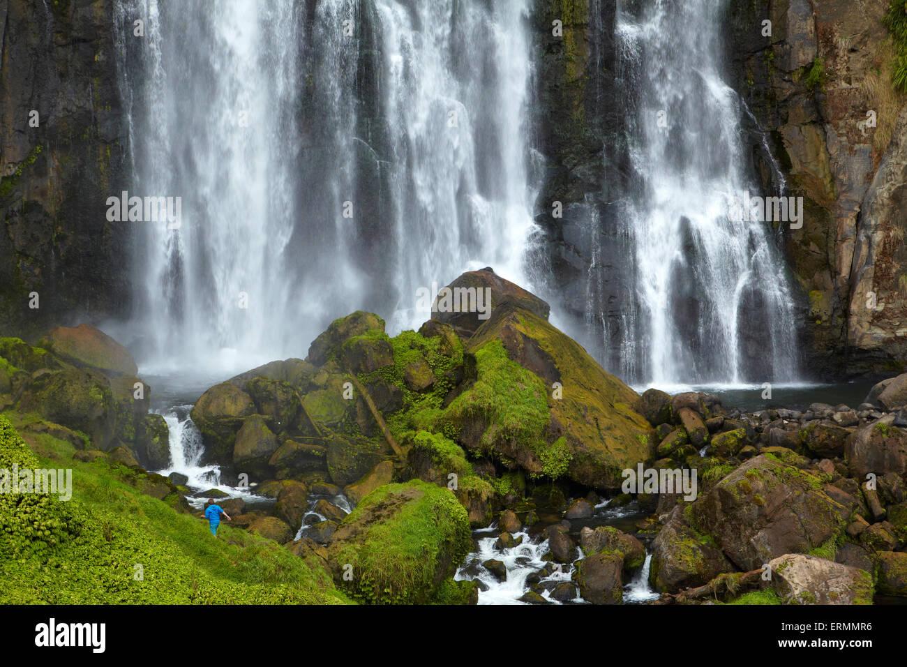 Marokopa Falls, Distretto di Waitomo, Waikato, Isola del nord, Nuova Zelanda Immagini Stock