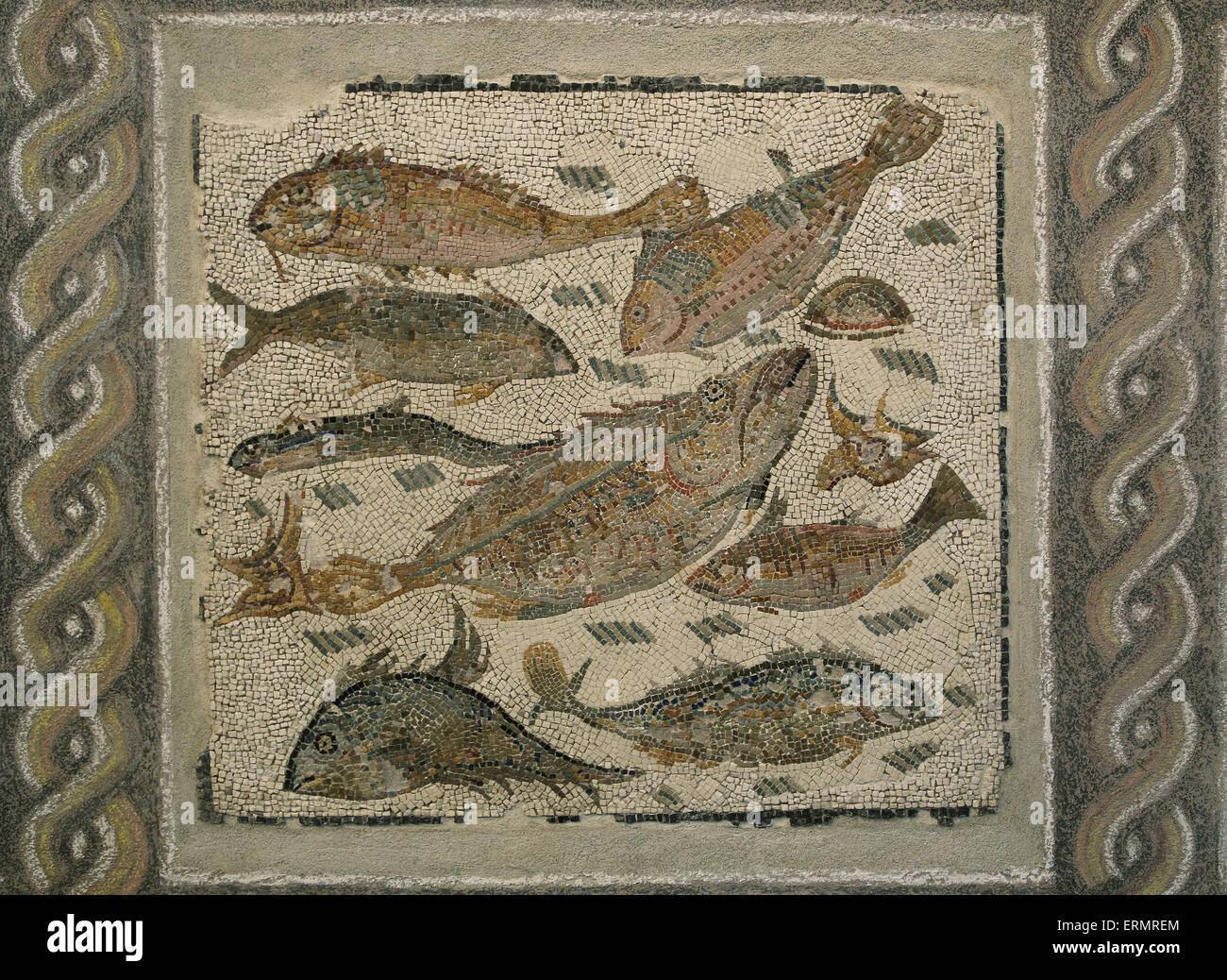 Antico pavimento in mosaico con pesci 2a 3a secolo museo for Pavimento con mosaico