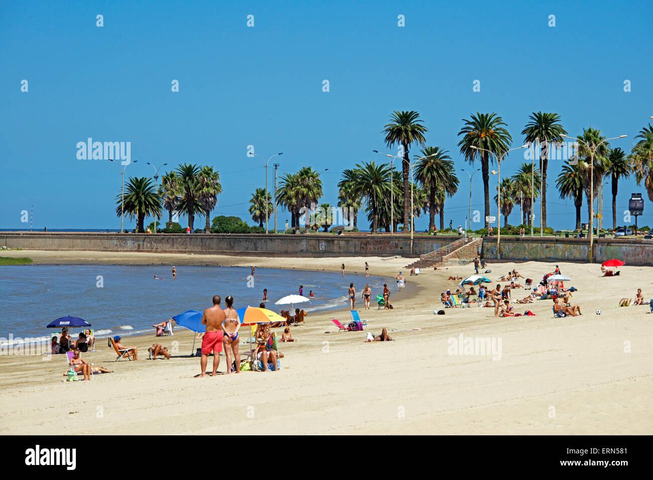 Playa de los Pocitos Montevideo Uruguay Immagini Stock