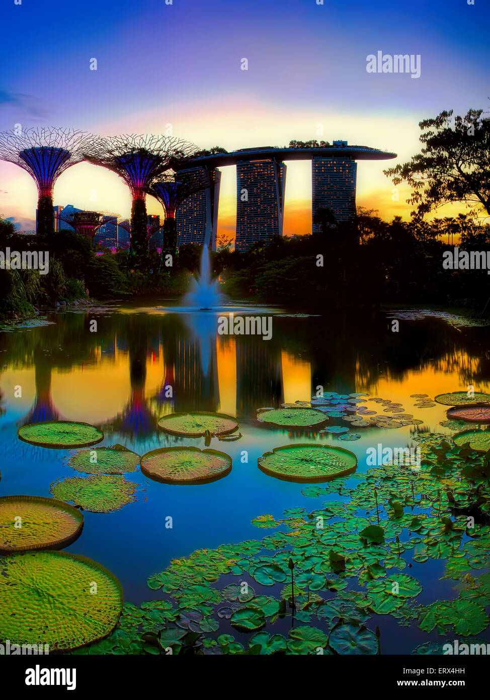 SINGAPORE-JUN 07: vista serale del laghetto di ninfee, e Marina Bay Sands a Giardini in baia su giu 07, 2015 a Singapore. Immagini Stock