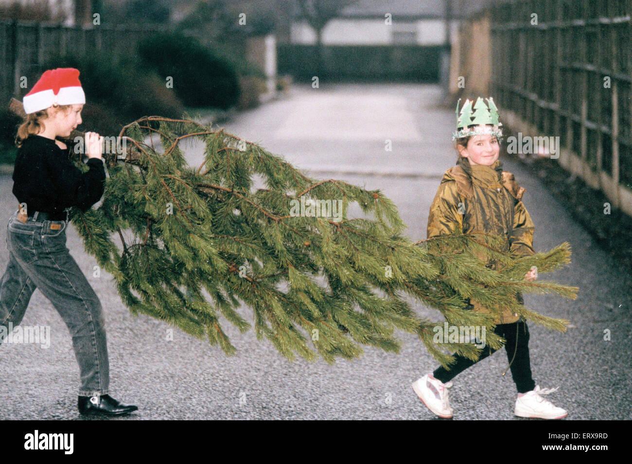 Quasi il grande giorno...e casa per effettuare un avvio in ritardo sulla messa e decorare l'albero di Natale Immagini Stock