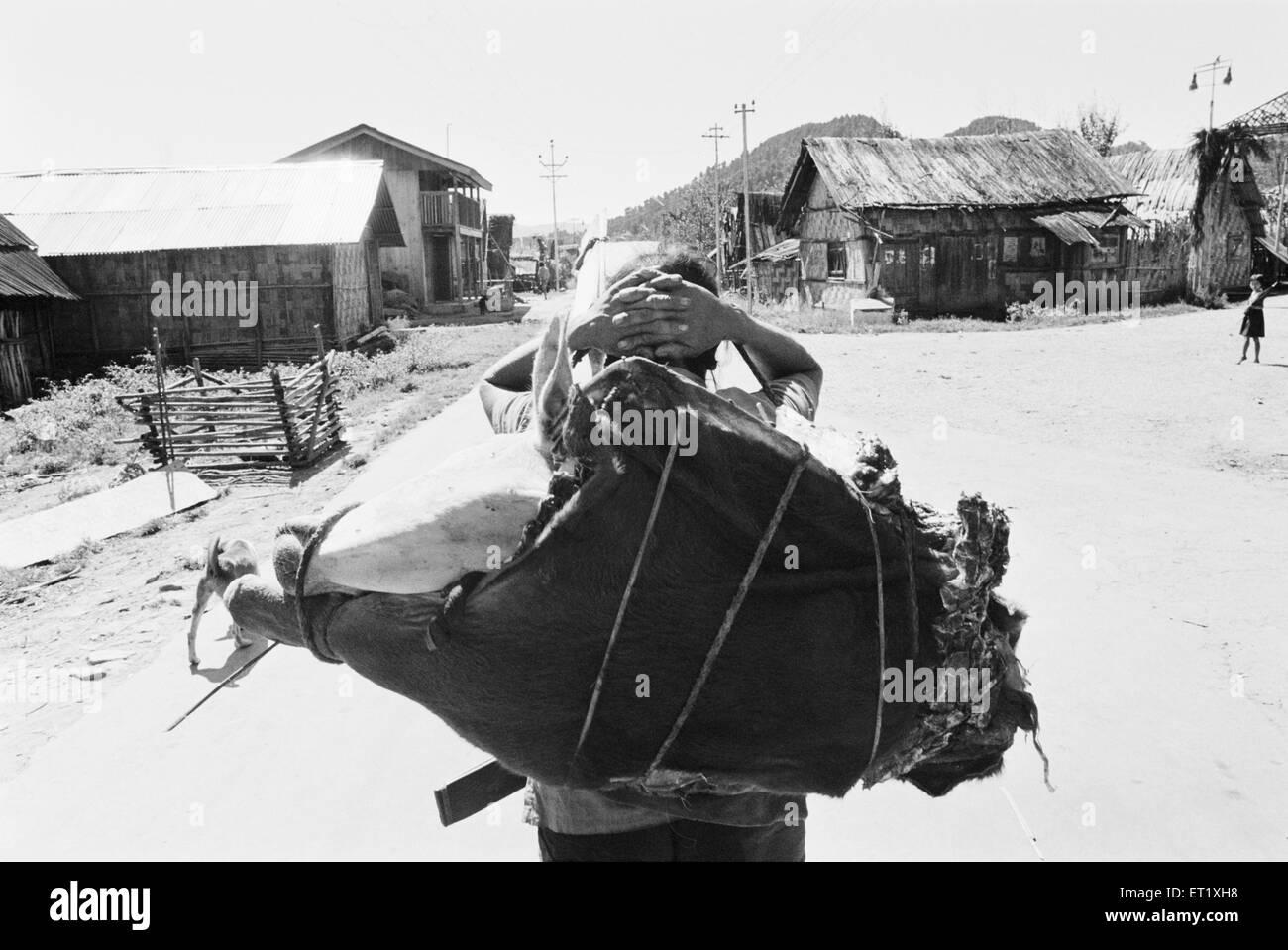 Uomo che trasportano carichi ; Kameng ; Arunachal Pradesh ; India 1982 Immagini Stock