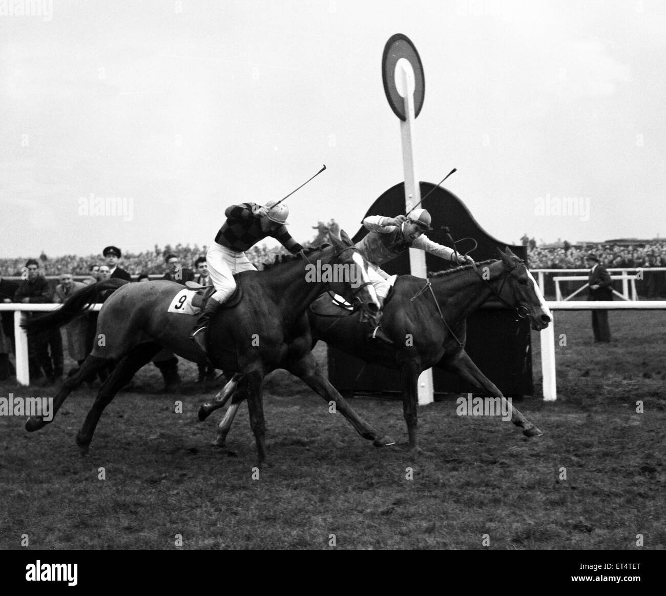 Won The Grand National At Aintree Immagini   Won The Grand National ... cef8c213d9f6
