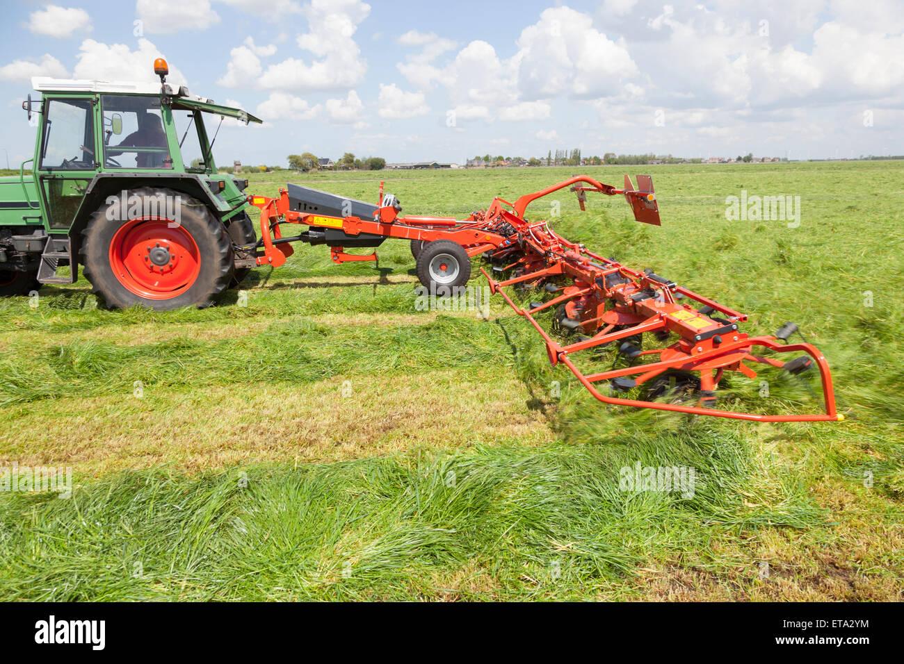 Red fieno turner dietro il trattore in prato verde nei Paesi Bassi Immagini Stock