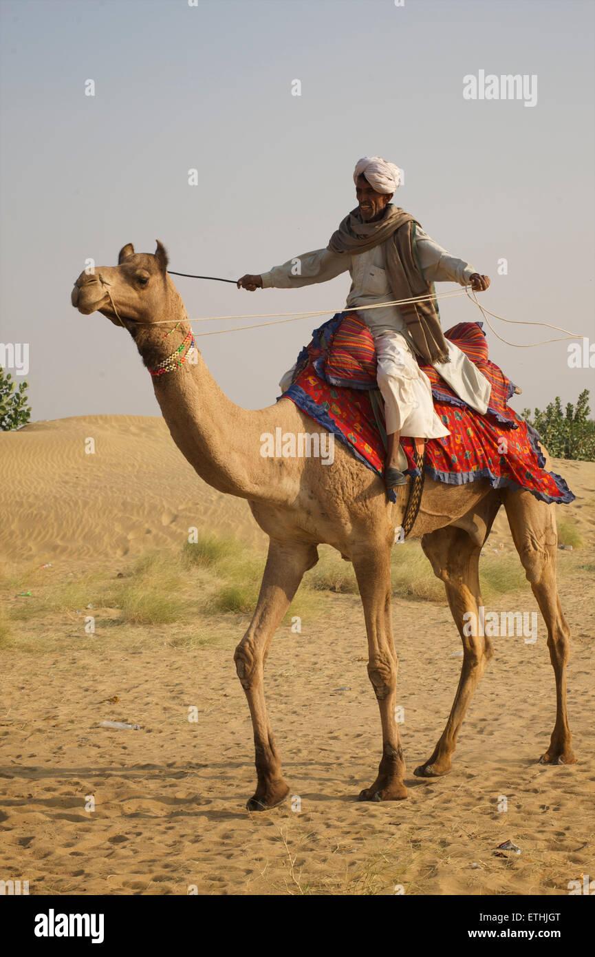 A dorso di cammello nel deserto del Thar a Sam, Rajasthan, India Immagini Stock