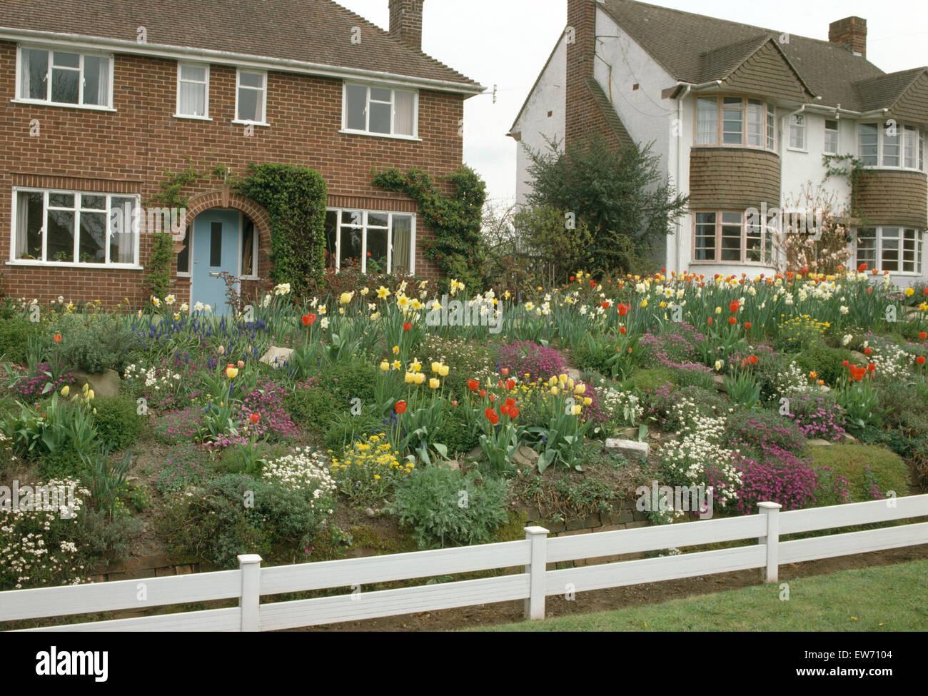 Lampadine colorate e rockery piante che crescono nel giardino