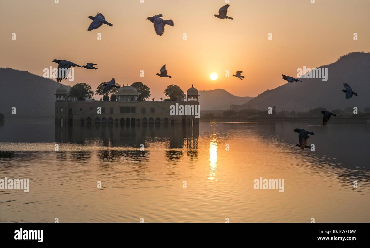 Gli uccelli sorvolano Jal Mahal Palace all'alba, Jaipur, Rajasthan, India Immagini Stock