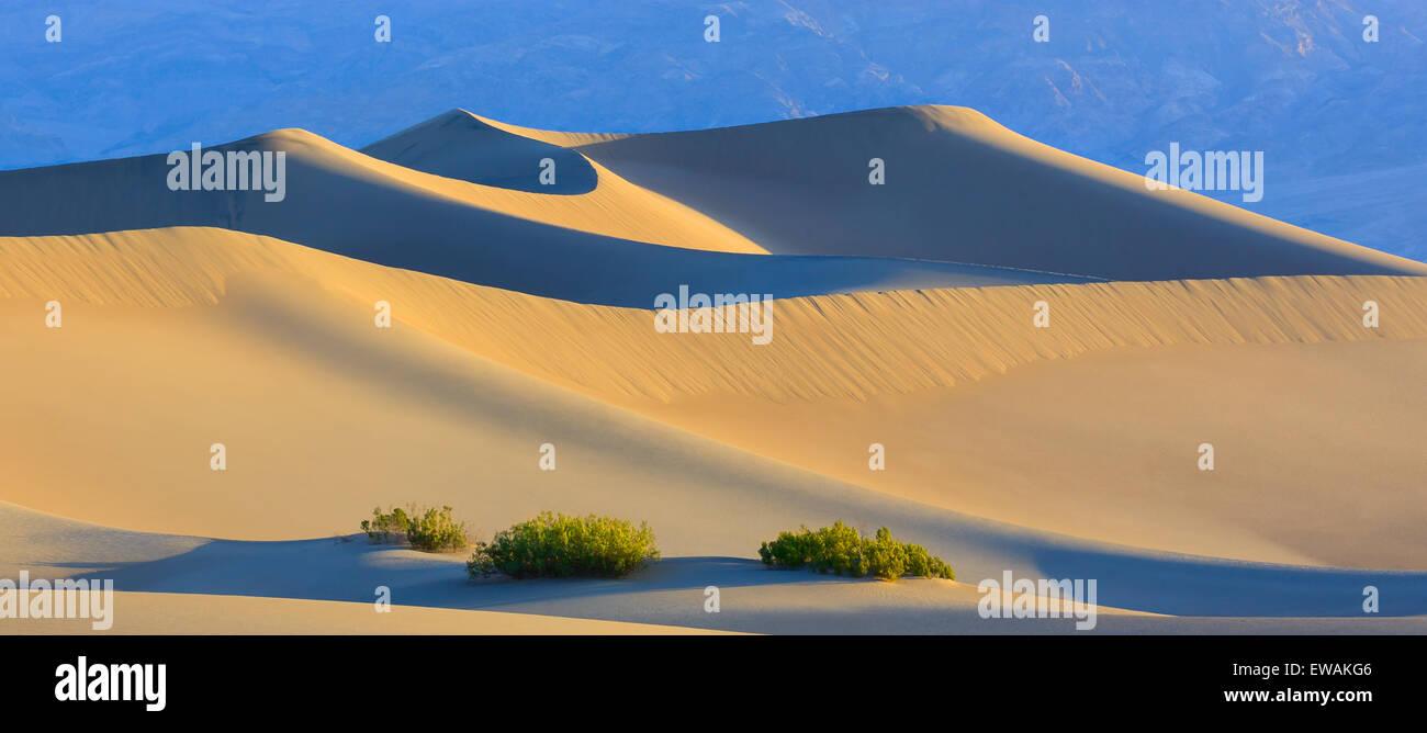 Sunrise in Mesquite Flat dune di sabbia nel Parco Nazionale della Valle della Morte in California, Stati Uniti d'America Foto Stock