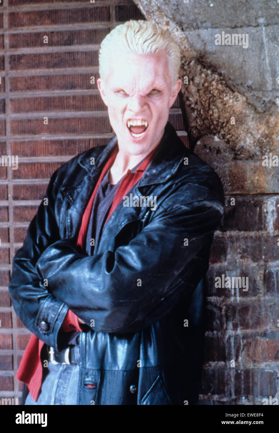 Buffy the Vampire Slayer Immagini Stock