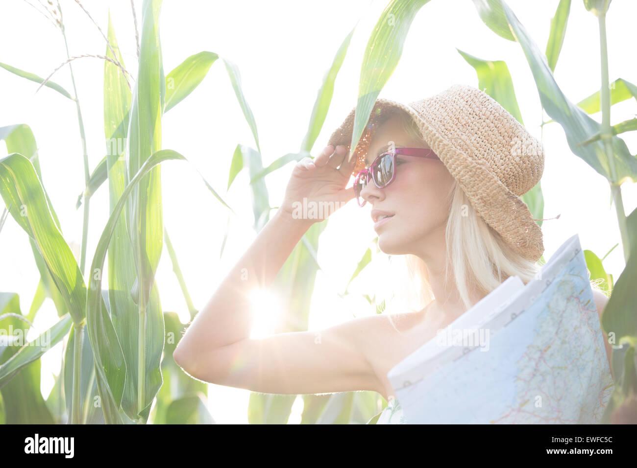 Donna che guarda lontano tenendo mappa nel mezzo di piante sulla giornata di sole Immagini Stock