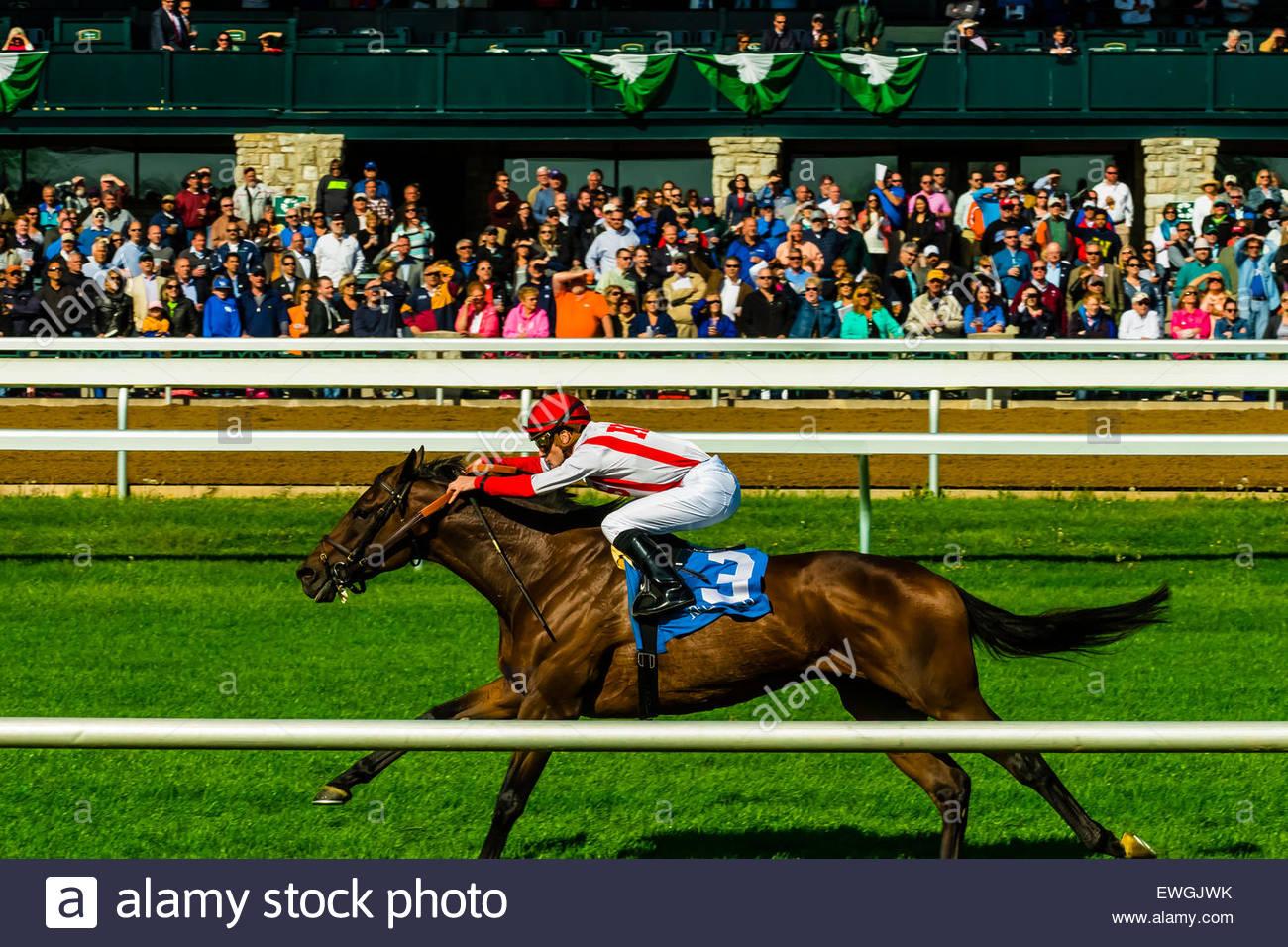 Jockey Julien Leparoux equitazione economia dell'innovazione, corse di cavalli sul manto erboso via a Keeneland Immagini Stock