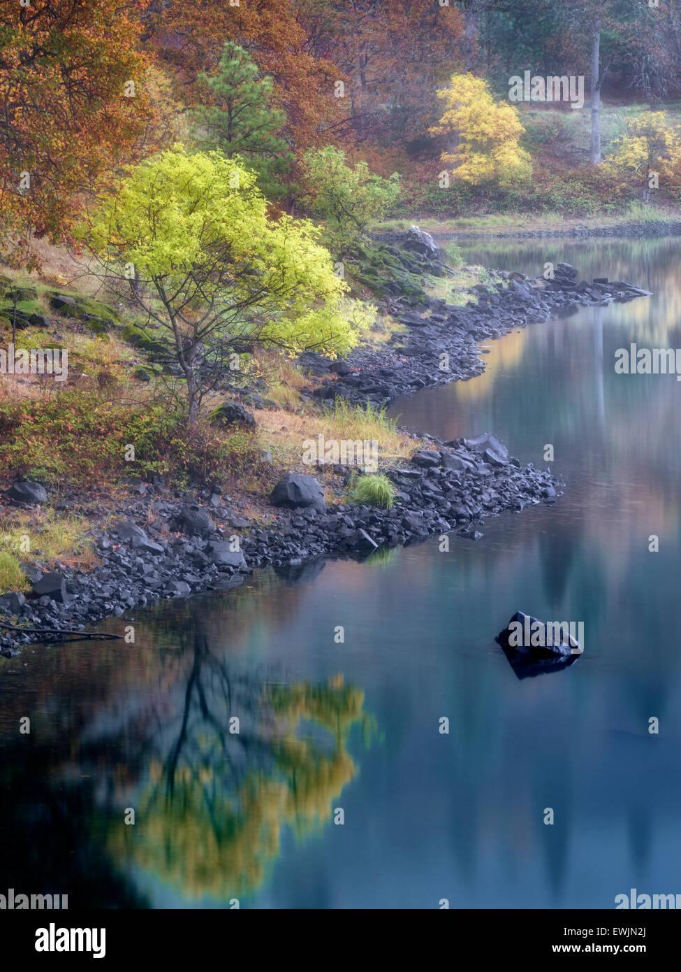 Piccolo lago e caduta colore vicino fiume Columbia. Columbia River National Scenic Area, Washington Immagini Stock