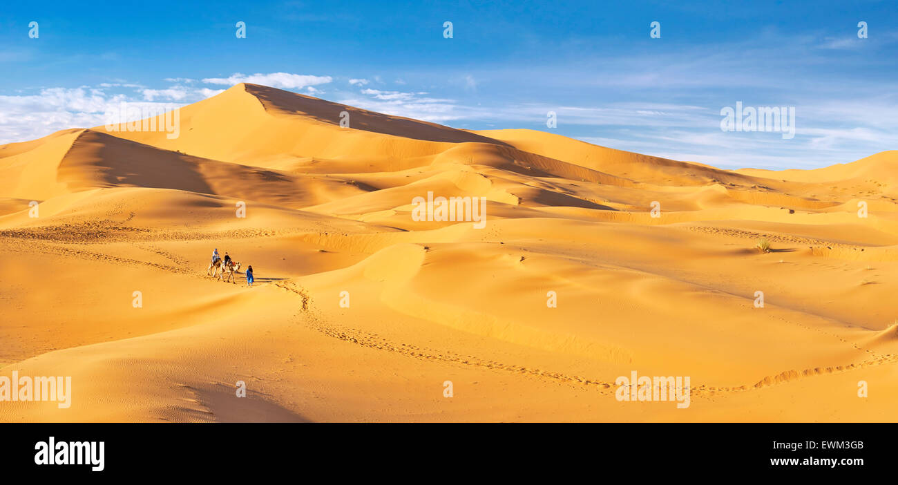 I turisti di marcia sui cammelli, Erg Chebbi deserto vicino a Merzouga, Sahara, Marocco Immagini Stock