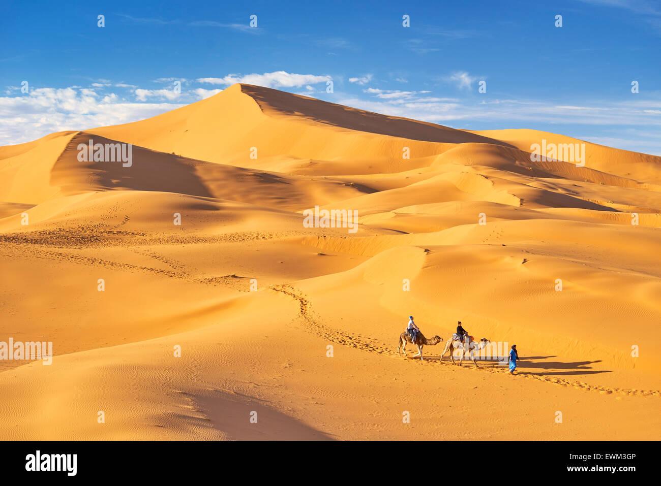 Marocco - i turisti di marcia sui cammelli, Erg Chebbi deserto vicino a Merzouga, Sahara Foto Stock