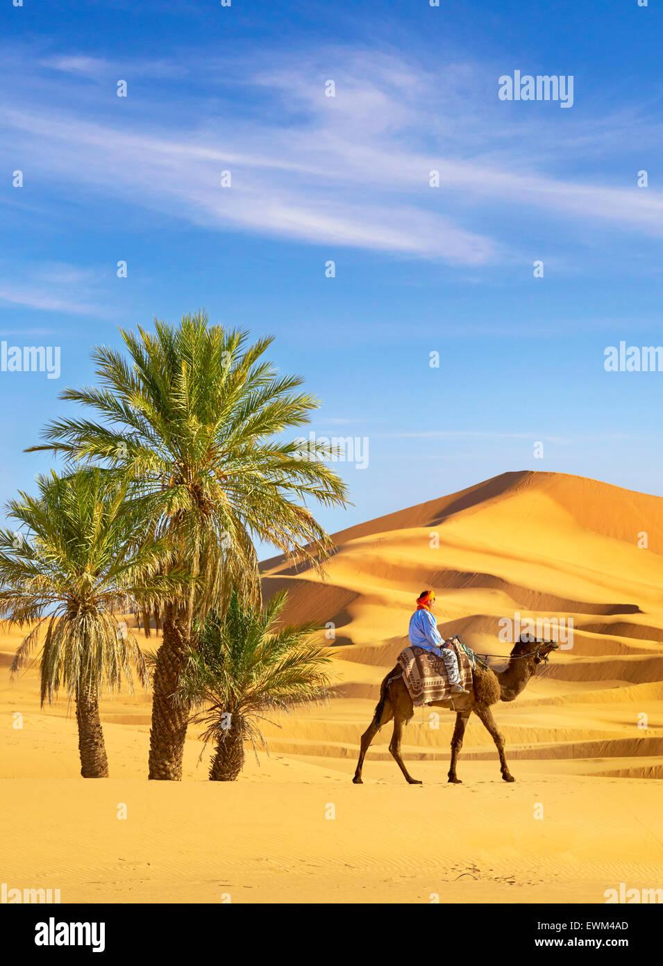 Berber uomo giro sul cammello, Erg Chebbi deserto vicino a Merzouga, Sahara, Marocco Immagini Stock