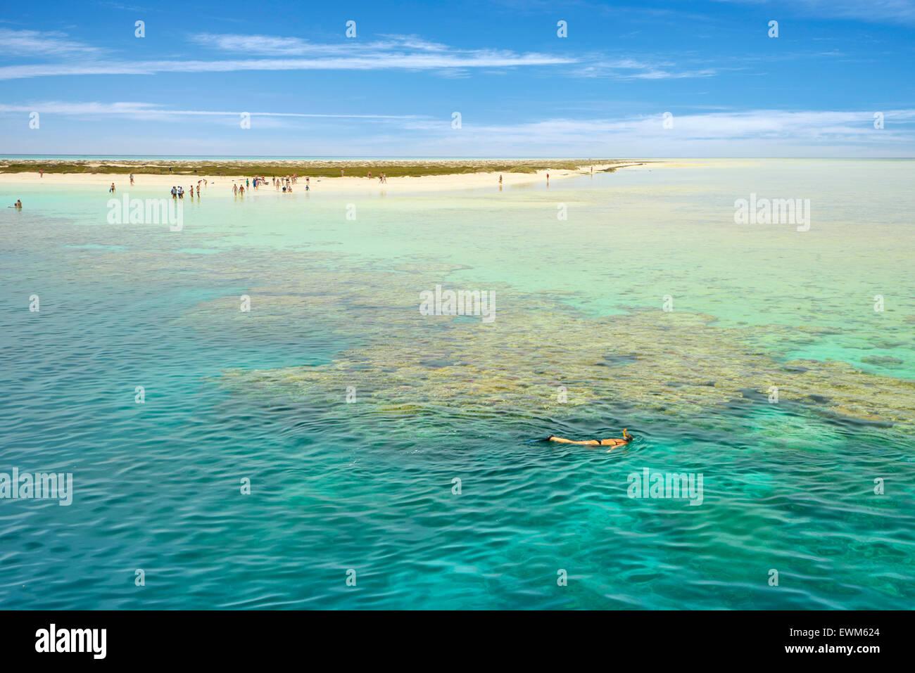 Isole Qulaan, Mar Rosso, Marsa Alam Regione, Egitto Foto Stock