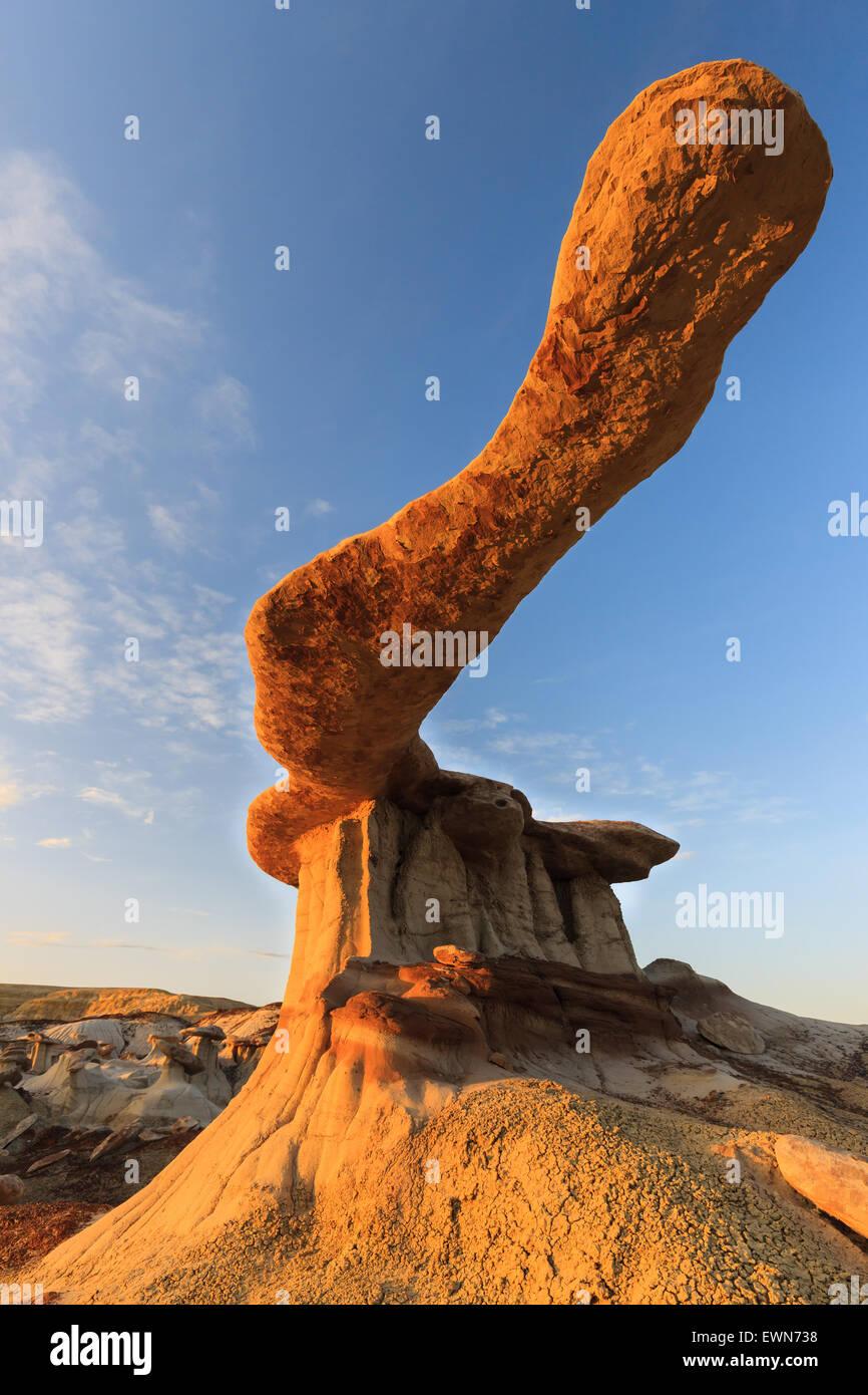 Re di Ali nel deserto Bisti, Nuovo Messico, STATI UNITI D'AMERICA Immagini Stock