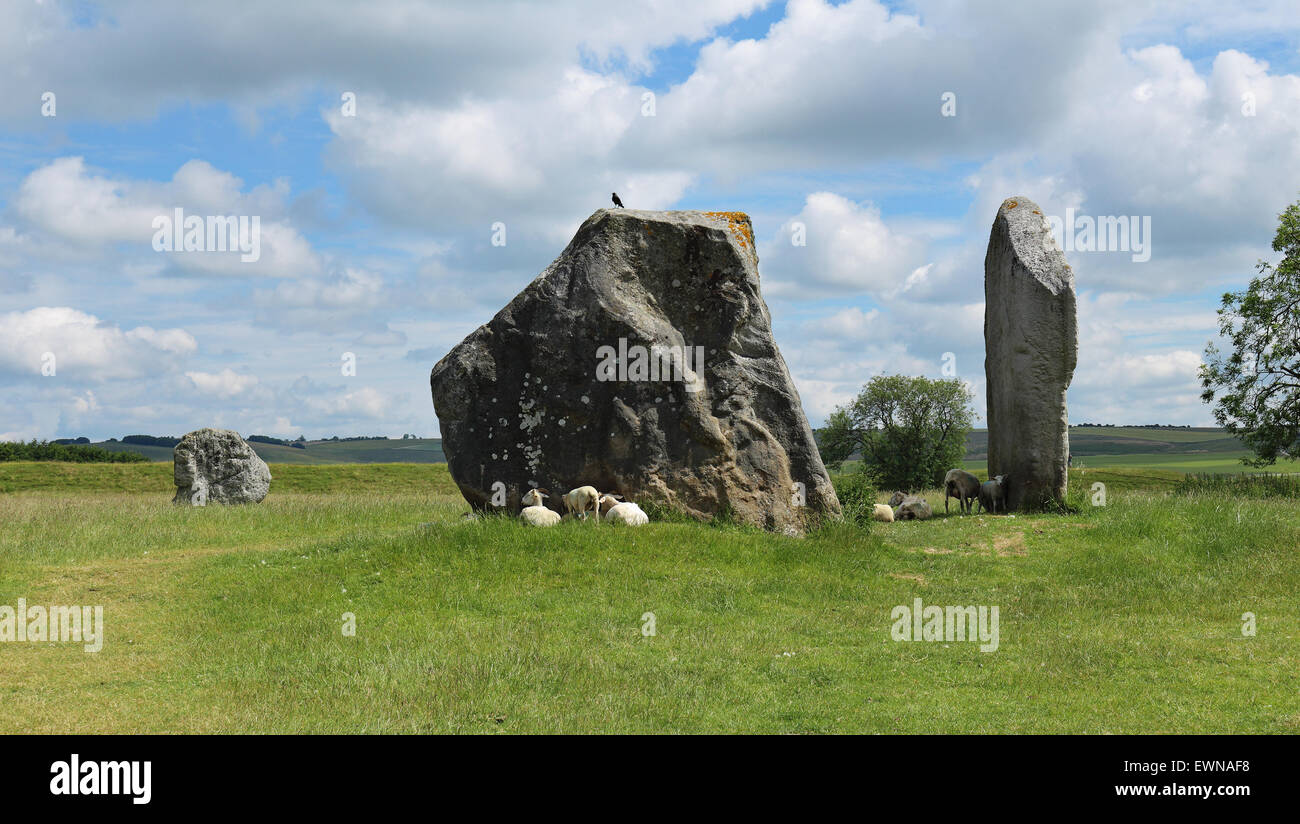 Sheltering Under Immagini Sheltering Under Fotos Stock Alamy