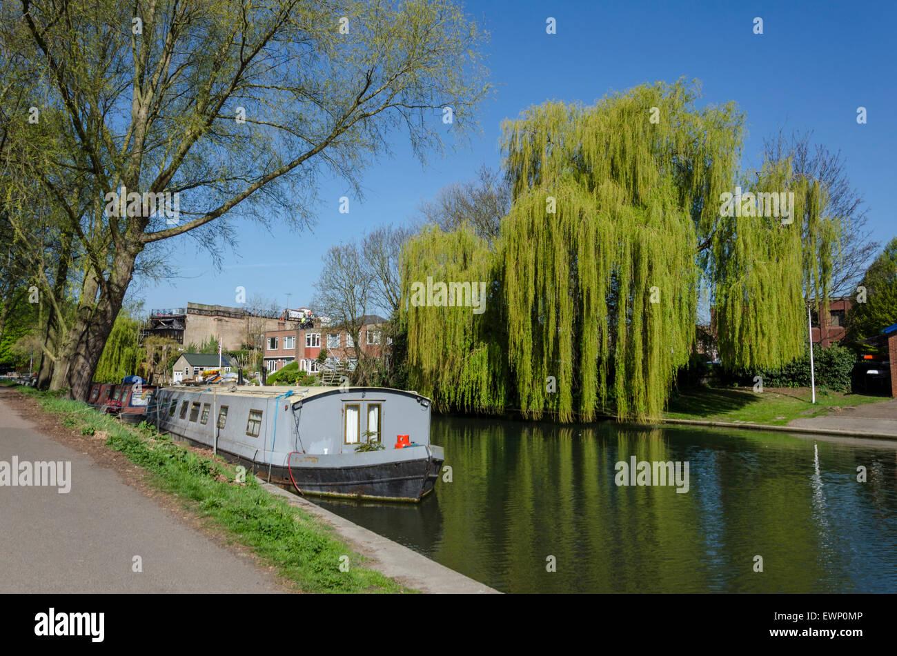 Barca sul fiume Cam, Cambridge, Regno Unito Immagini Stock