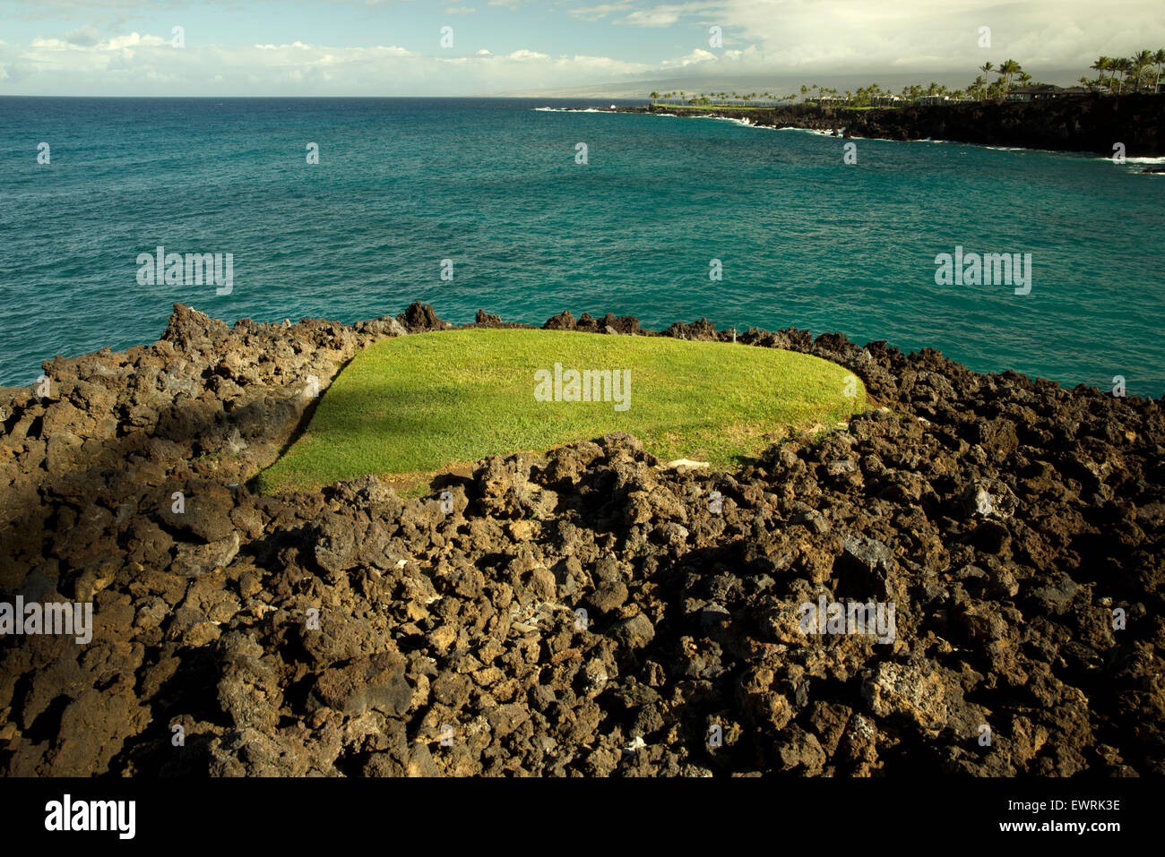 Piccola patch di prato in pietra lavica. Hawaii, la Big Island. Immagini Stock