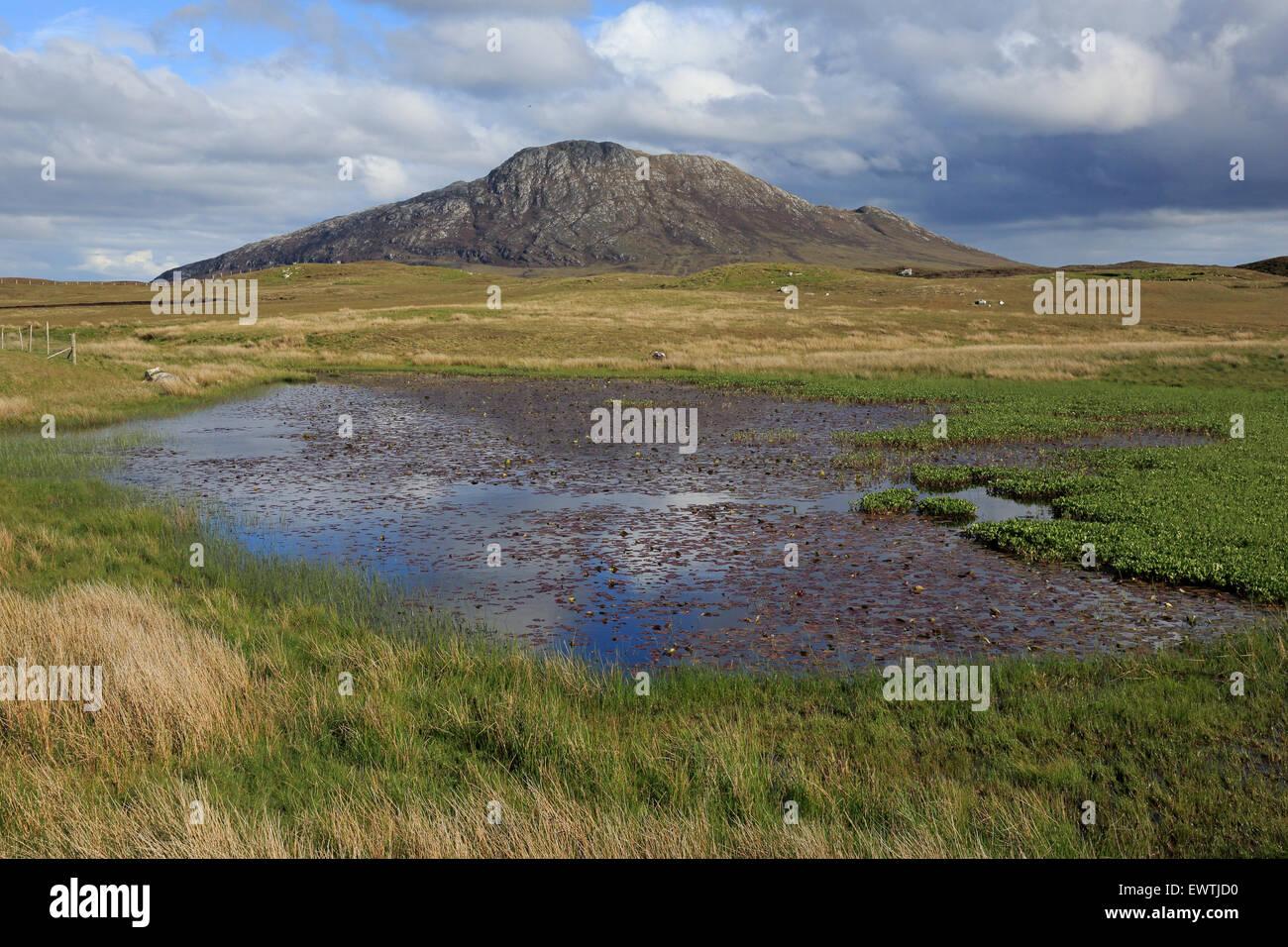 Vista di Eaval attraverso un piccolo Lochan su North Uist Ebridi Esterne Foto Stock