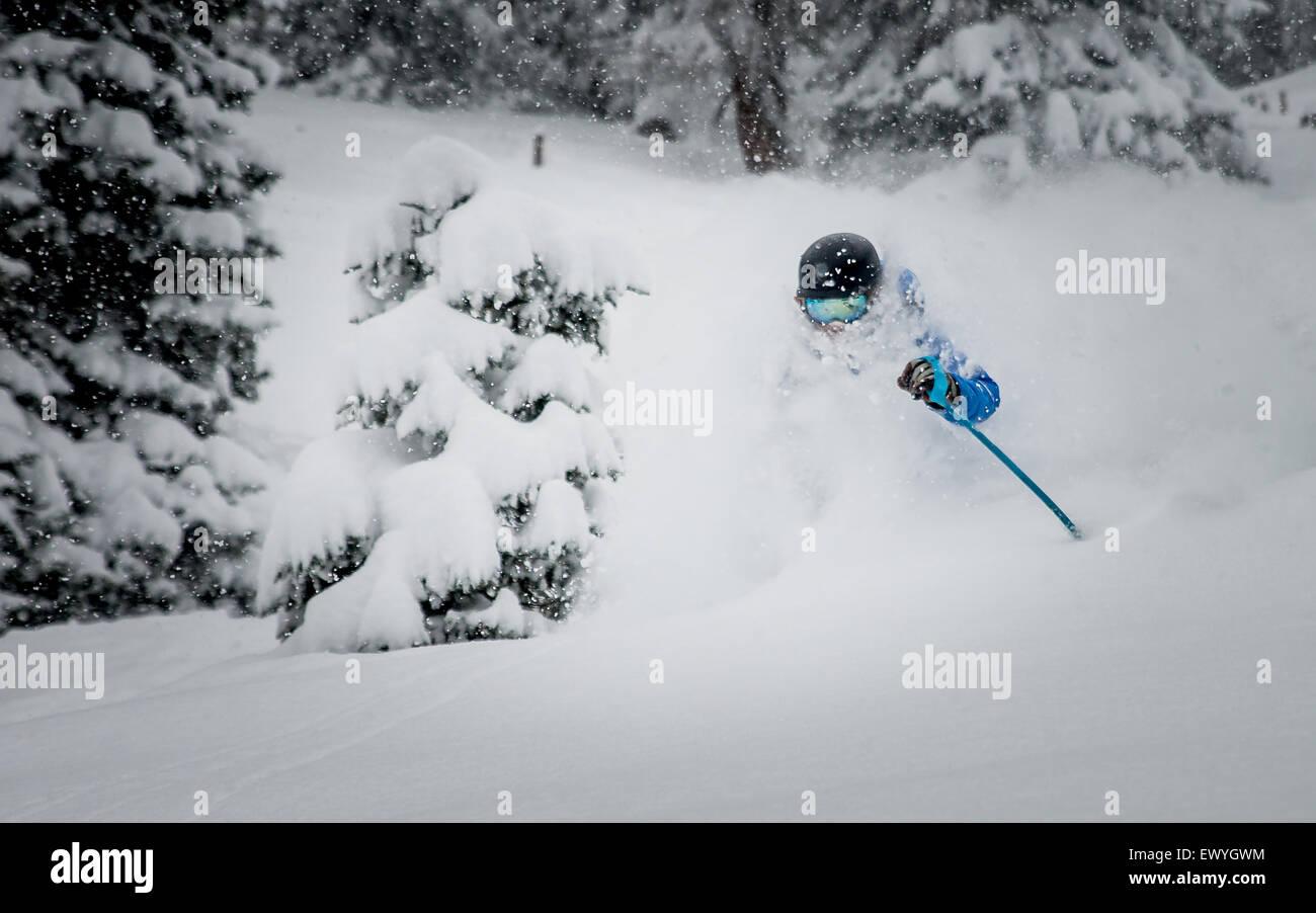 Un maschio di sciatore godendo di polvere profonda Sciare nelle Alpi austriache. Immagini Stock