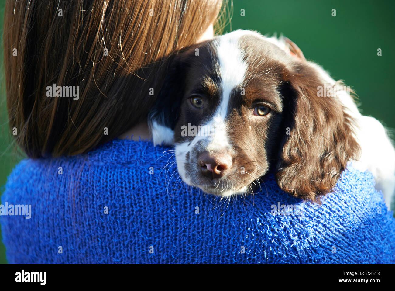 Ragazza con Pet Spaniel cucciolo all'aperto in giardino Immagini Stock