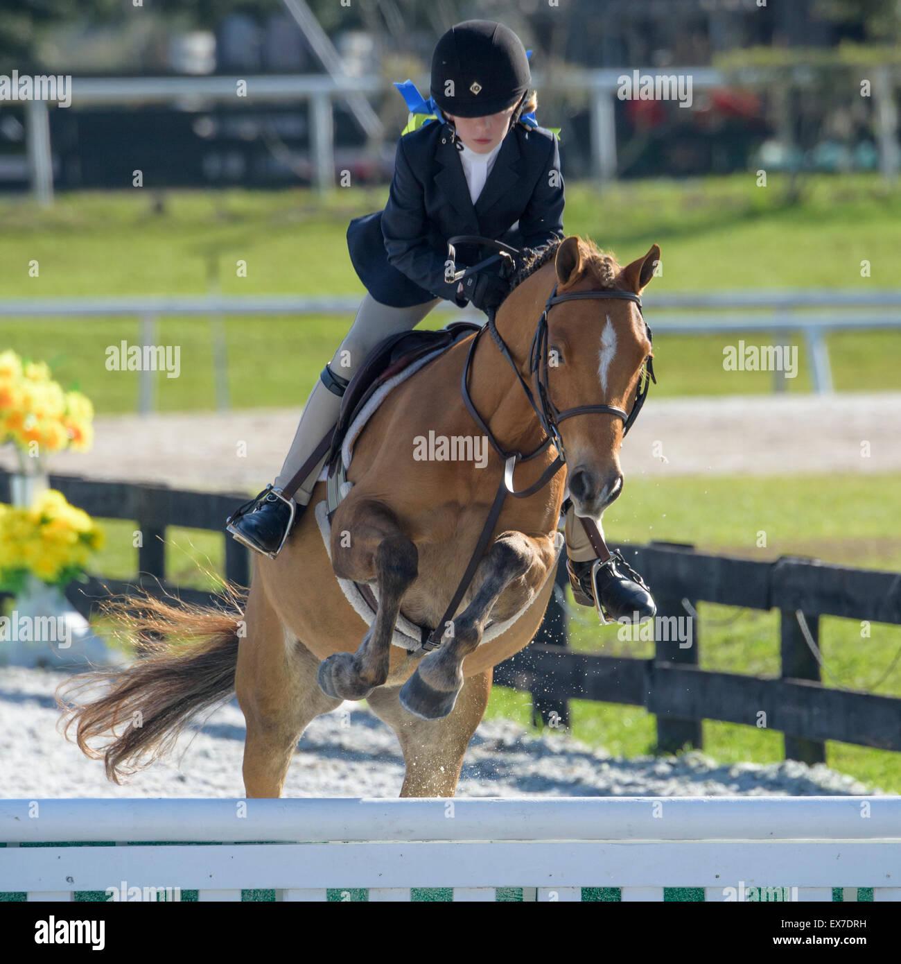 Gioventù Femminile rider in show jumping concorrenza Immagini Stock