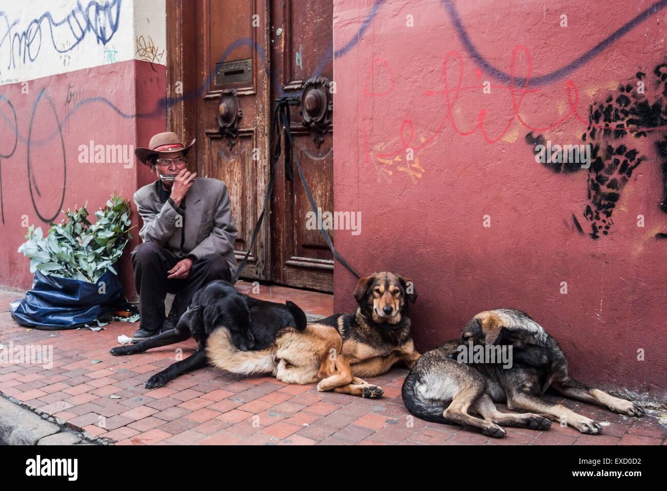 Un musicista di strada e i suoi cani nella Candelaria distretto di Bogotà, Colombia. Immagini Stock
