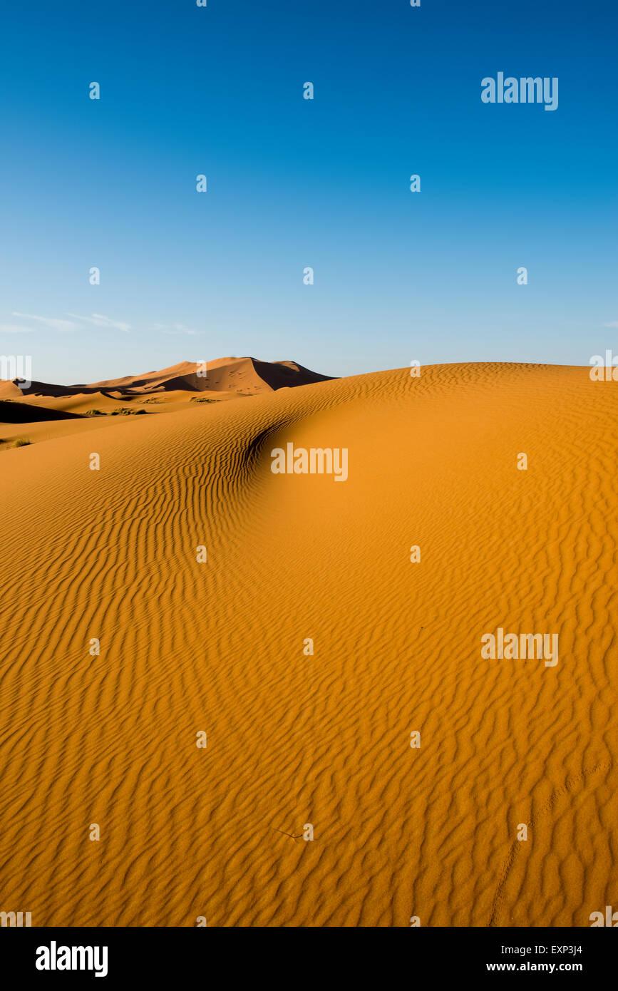 Dune di sabbia nella luce del mattino, Merzouga, regione Meknès-Tafilalet, Marocco Immagini Stock