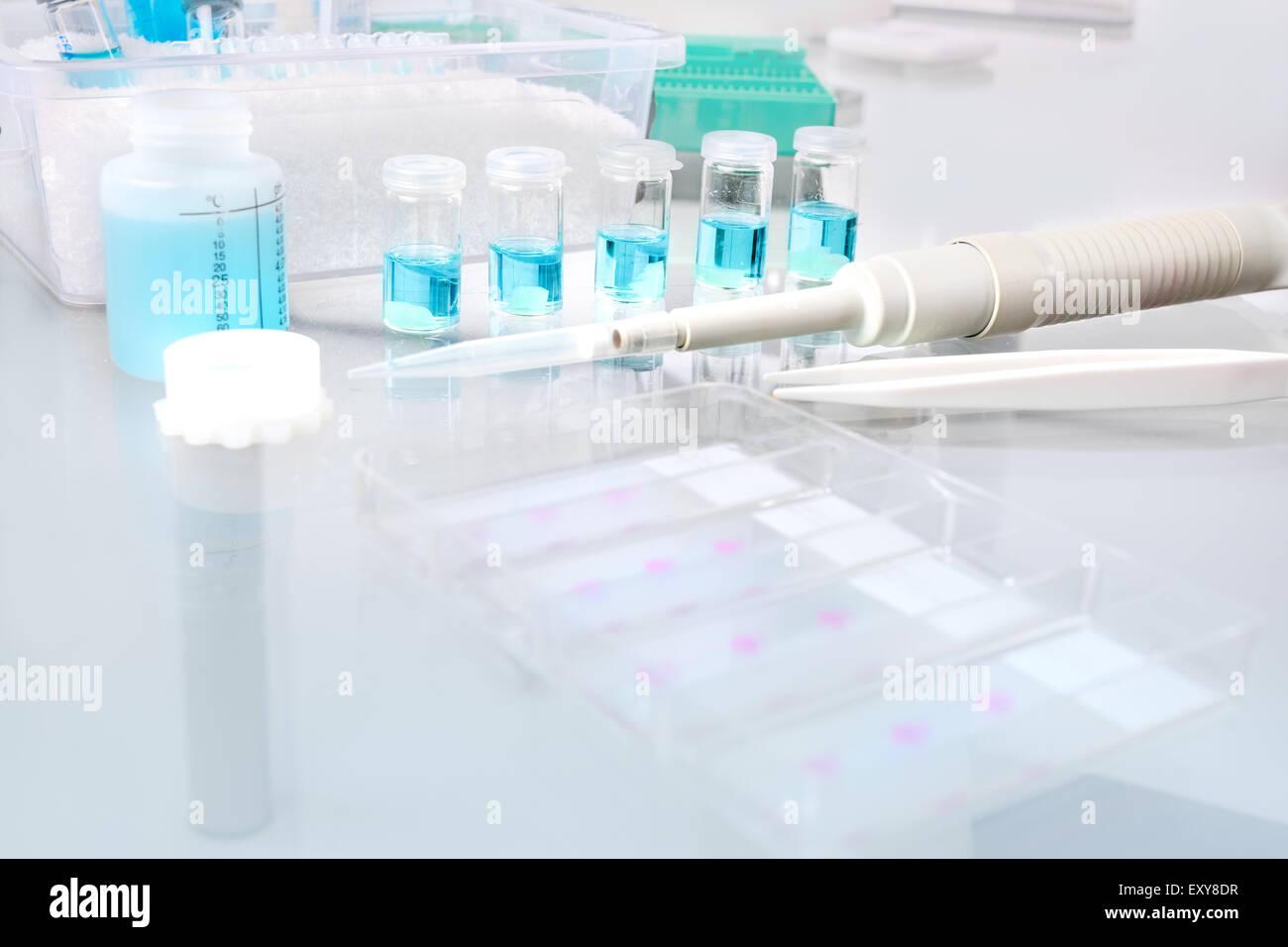 Scientifico o medico di fondo con il fissaggio di campioni di tessuto per istologia e microscopia, lo spazio per Immagini Stock