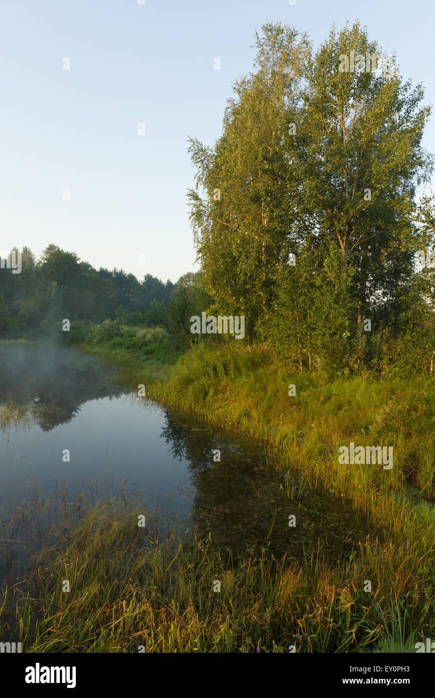 Il fiume scorre tra la costa di fresco in un ambiente di ...