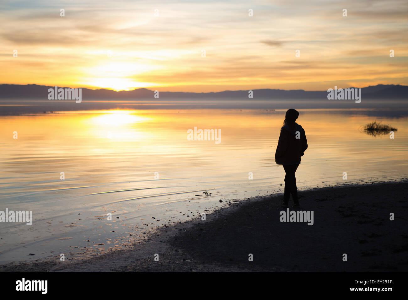 Giovane donna in piedi a bordo d'acqua, guardando il tramonto, vista posteriore Foto Stock