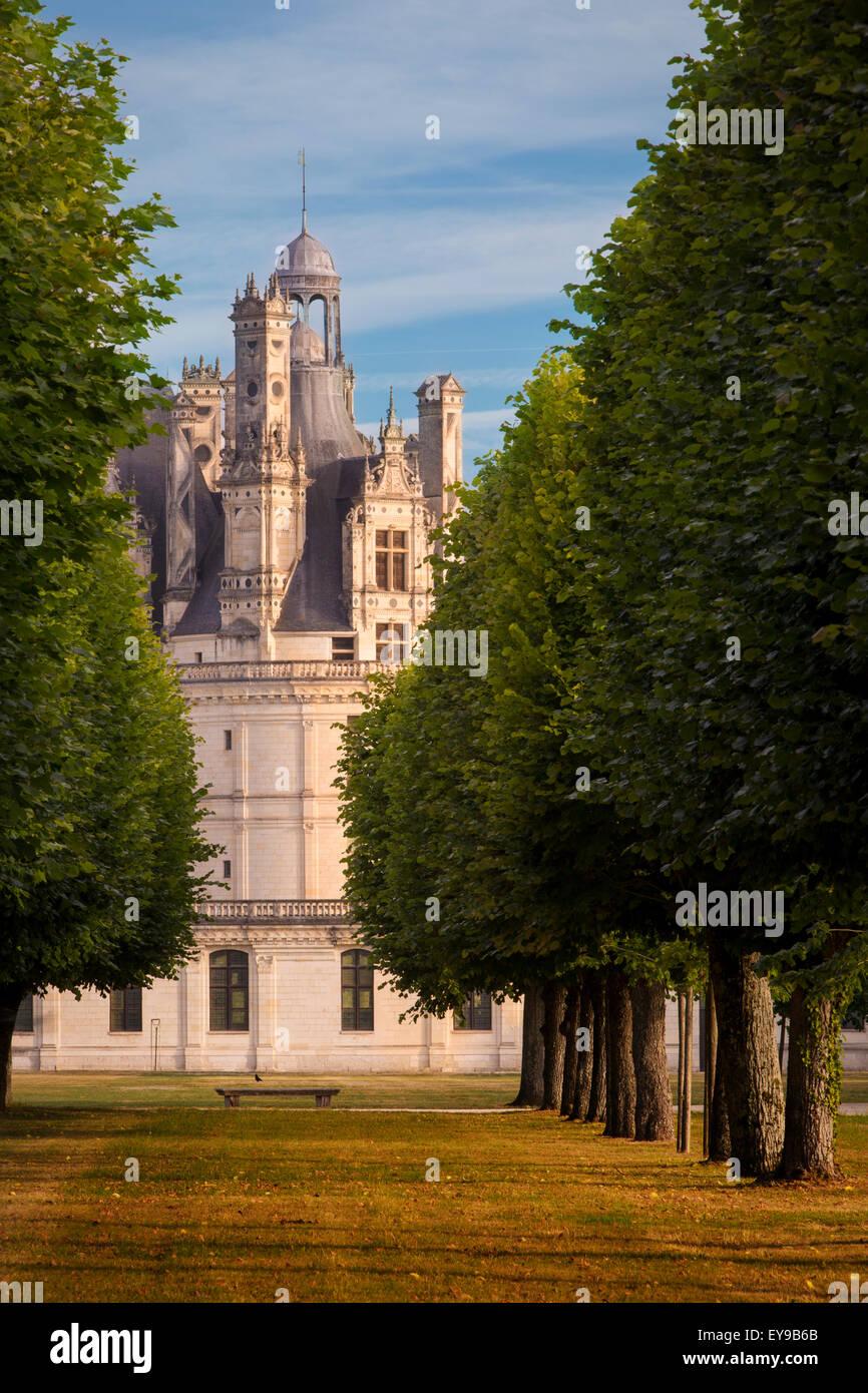 La mattina presto su Chateau de Chambord, Loir-et-Cher, Centre, Francia Immagini Stock